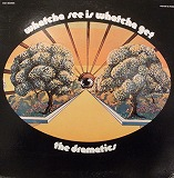 DRAMATICS / WHATCHA SEE IS WHATCHA GET