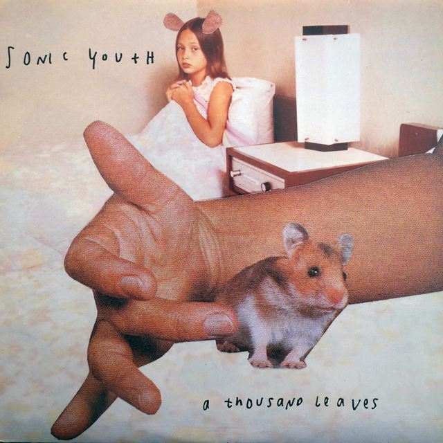 SONIC YOUTH / A THOUSAND LEAVES