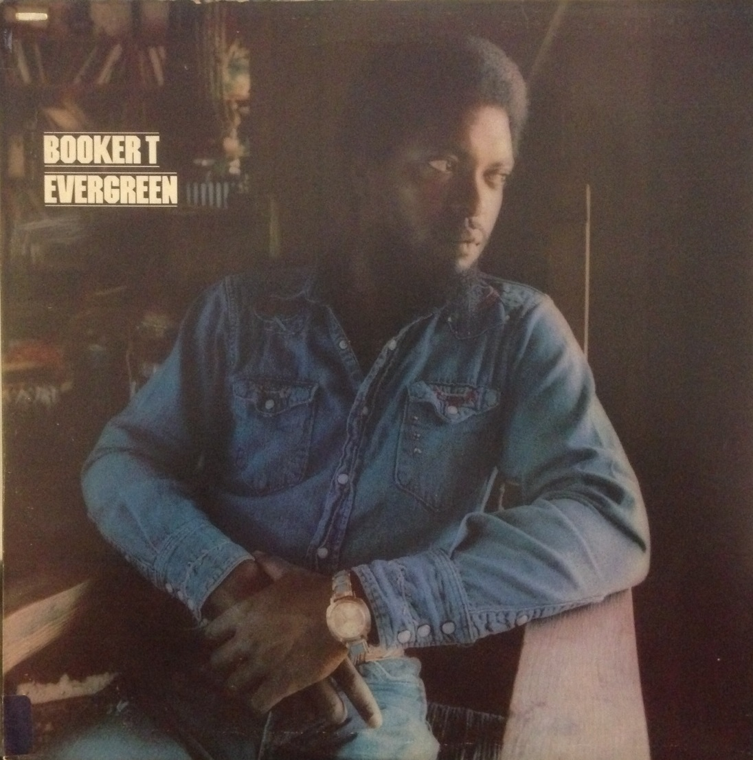 BOOKER T / EVERGREEN