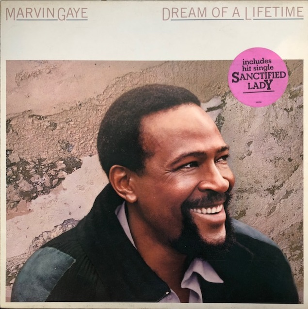 MARVIN GAYE / DREAM OF A LIFE TIME