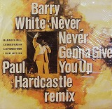 BARRY WHITE / NEVER NEVER GONNA GIVE YOU UP