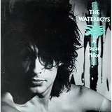 WATERBOYS / A PAGAN PLACE