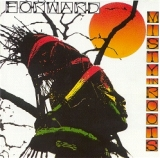 MISTY IN ROOTS ‎/ FORWARD