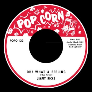 VARIOUS / OH! WHAT A FEELING - WHAT A FEELING