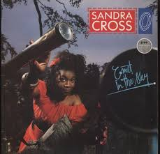 SANDRA CROSS / COMET IN THE SKY
