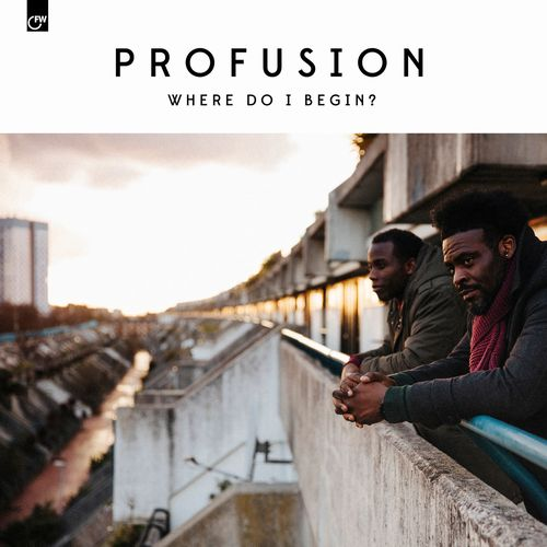 PROFUSION / WHERE DO I BEGIN ?