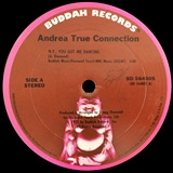 ANDREA TRUE CONNECTION / DON'T WANNA LOVE YOU AGAIN