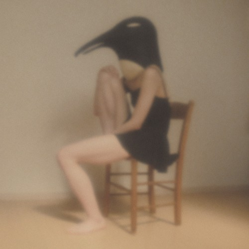 VARIOUS (伊藤ゴロー) / PENGUIN CAFE ORCHESTRA -TRIBUTE-