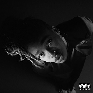 LITTLE SIMZ / GREAY AREA